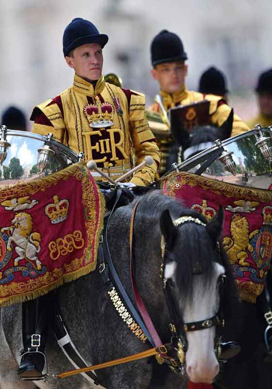 Household Cavalry Drum Horses