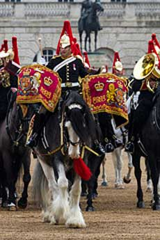 Blues and Royals mounted band