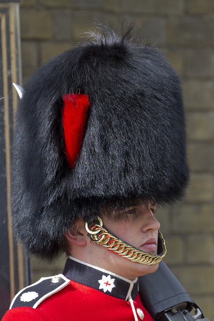Coldstream Guards sentry