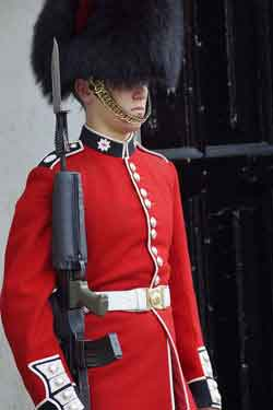 Coldstream Guard on sentry duty