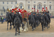Household-Cavalry-Band-pb-06