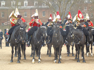 Household-Cavalry-Band-pb-14