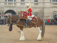 Household-Cavalry-Band-pb-17