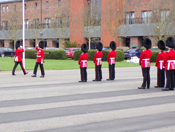 Grenadier Guards Officer on parade