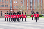 Grenadier Guards dressing