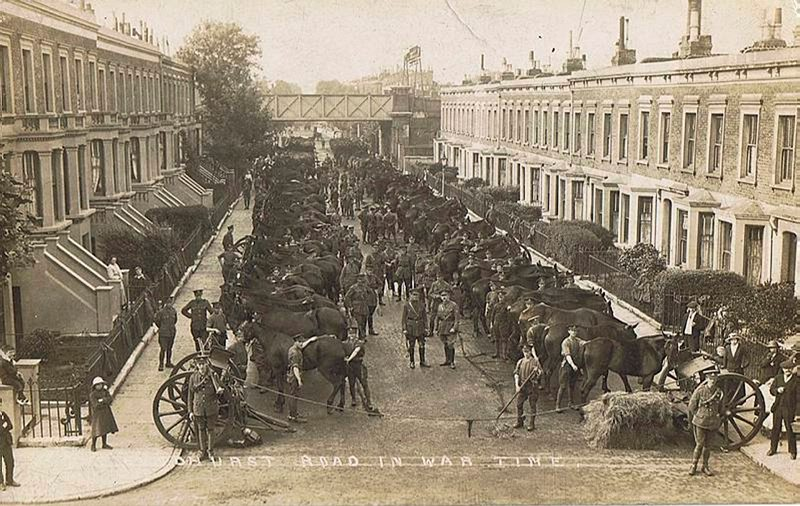 Men and horses getting ready to go to war in 1915
